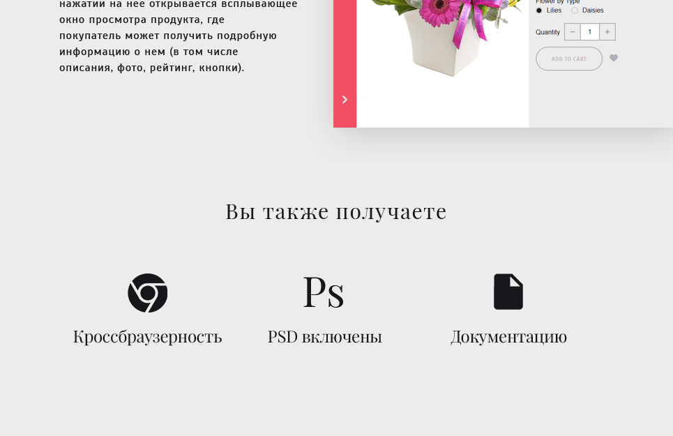 Website Design Template 62258 - gifts birthday wedding engagement occasions specials exclusive roses lilies orchid chrysanthemum tulip order services packing present cards holiday celebration catalog delivery chamomile daisy bouquet wrapping