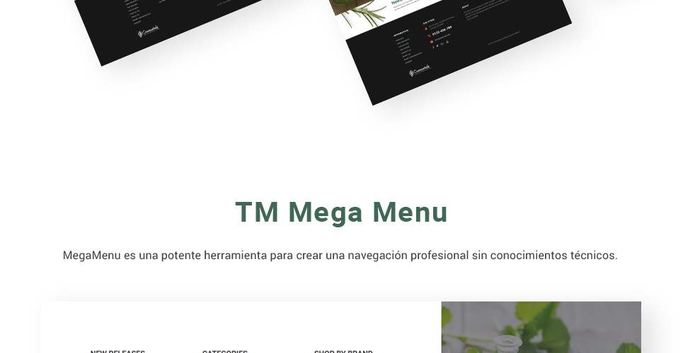 Website Design Template 62329 - client