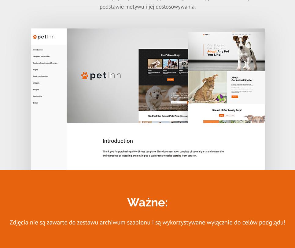 Website Design Template 62483 - grooming supplies vitamins recommenda