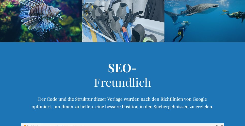 Website Design Template 62484 - ocean wave aqualung submarine underwater oxygen fish coral flippers mask reef photography camera training services trainer subscription rules travel equipment