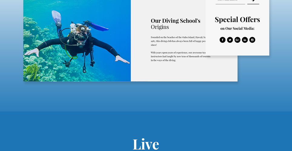 Website Design Template 62484 - member water sea ocean wave aqualung submarine underwater oxygen fish coral flippers mask reef photography camera training services trainer subscription rules travel equipment