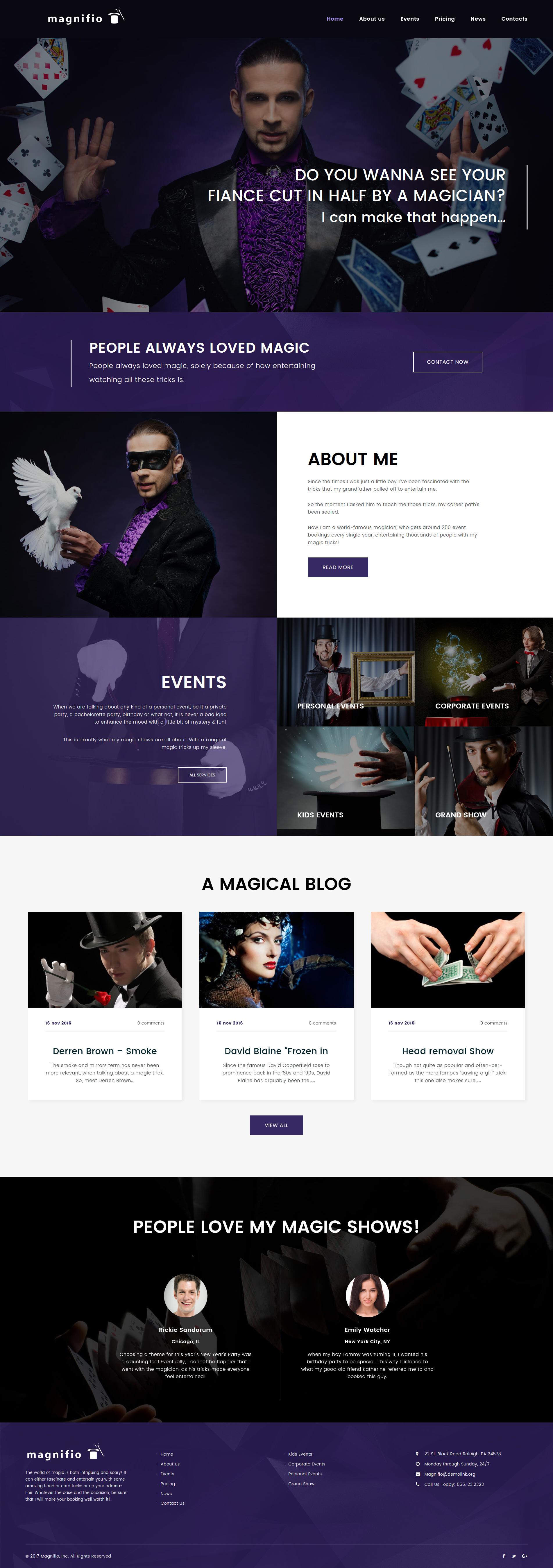 """Magician Artist & Performer"" 响应式WordPress模板 #62413 - 截图"