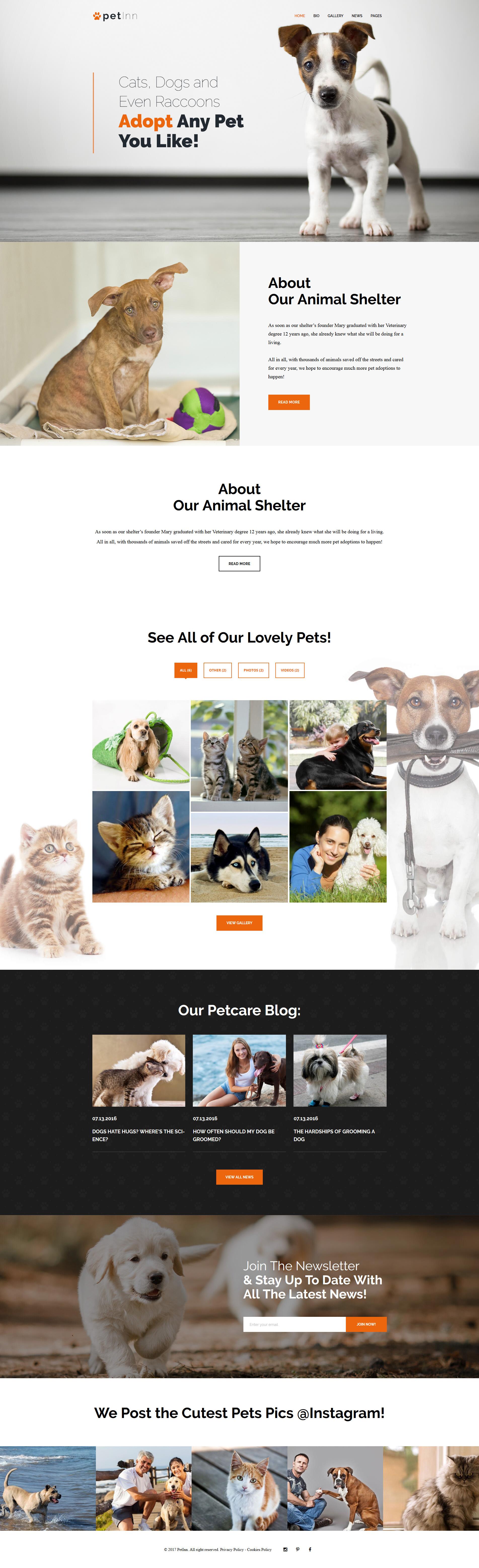 """Modello WordPress Responsive #62483 """"PetInn - Animal Shelter Responsive"""""""