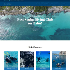 parallax wordpress sports themes
