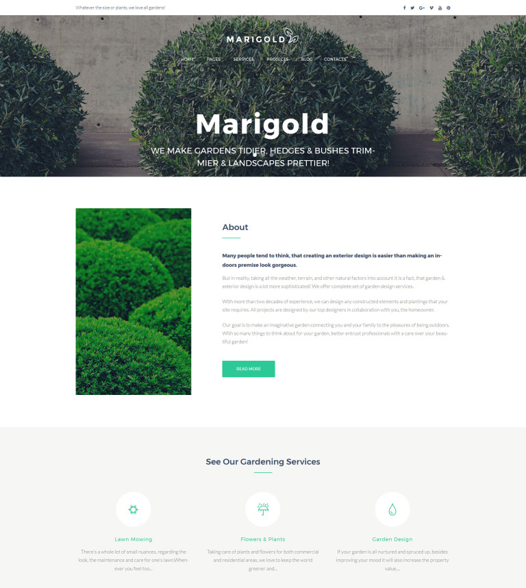 Tema de WordPress #63489 para Sitio de Diseño de jardines