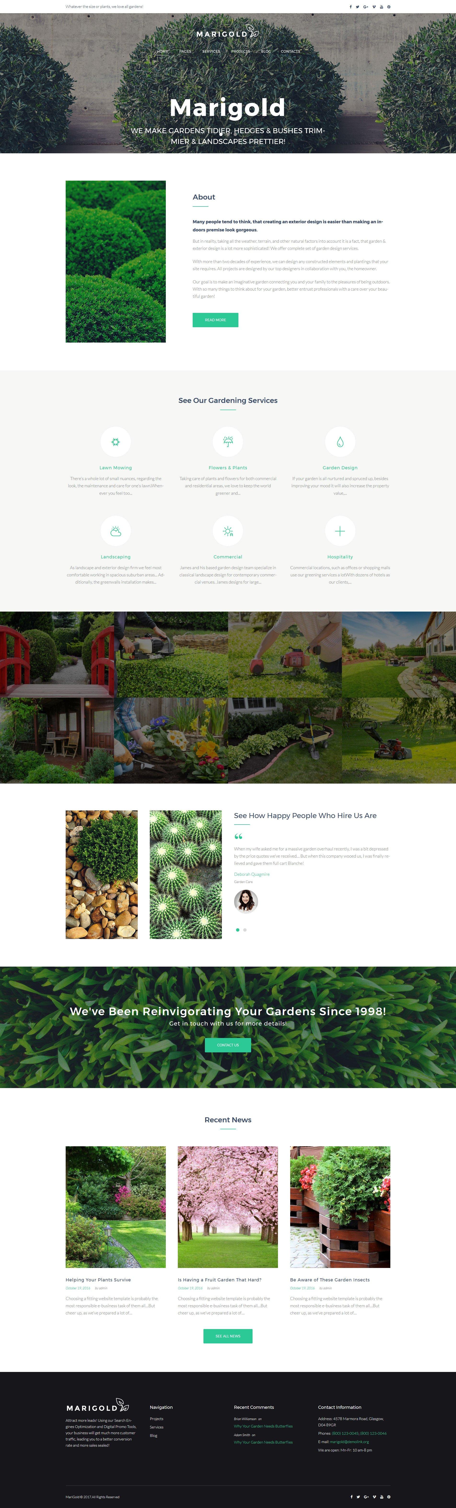 Шаблон Marigold сайта на тему ландшафтный дизайн #63489