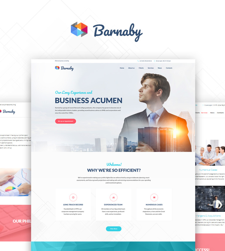 Barnaby - Consulting WordPress Theme