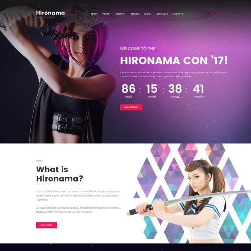 Hironama  - Responsive WordPress Template