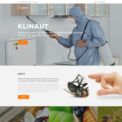 Klinaut - Responsive WordPress Template