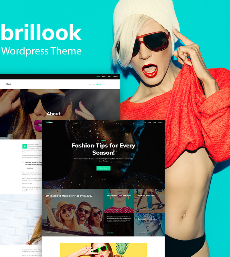 Brillook - Fashion Blog Responsive WordPress Theme