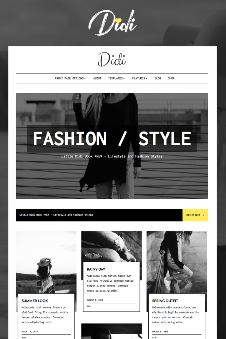 Didi - Fashion WordPress Theme Big Screenshot