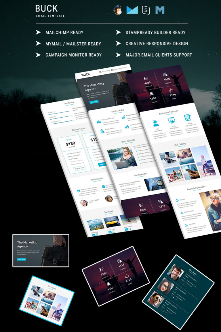 BUCK - Responsive Email Template Newsletter Template New Screenshots BIG