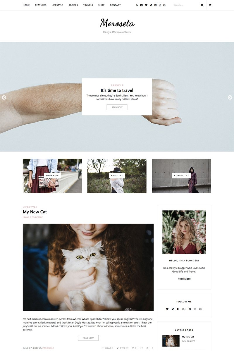Moroseta WordPress Theme - screenshot