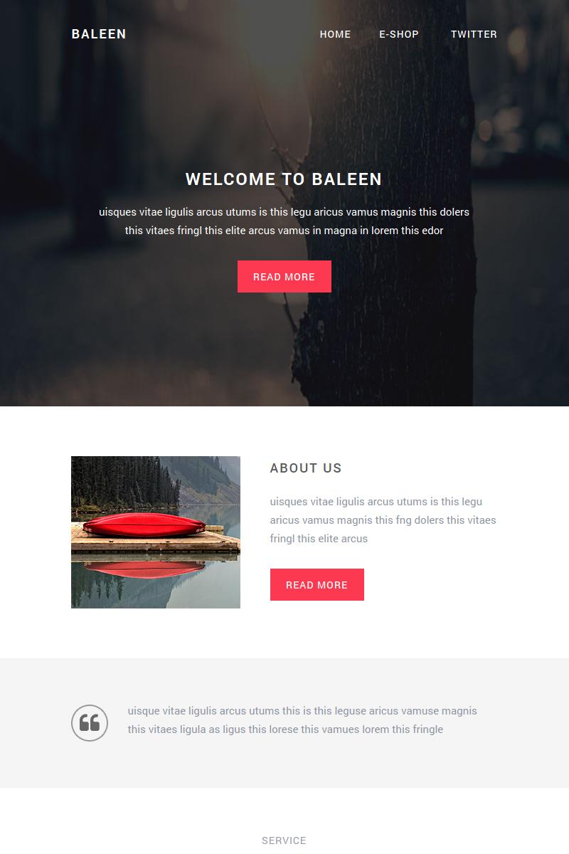 "Newsletter šablona ""Baleen - Responsive email template"" #65043"