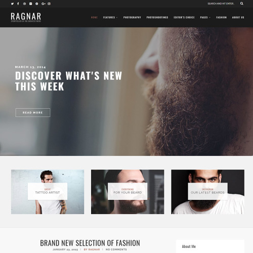 Ragnar - Responsive WordPress Template