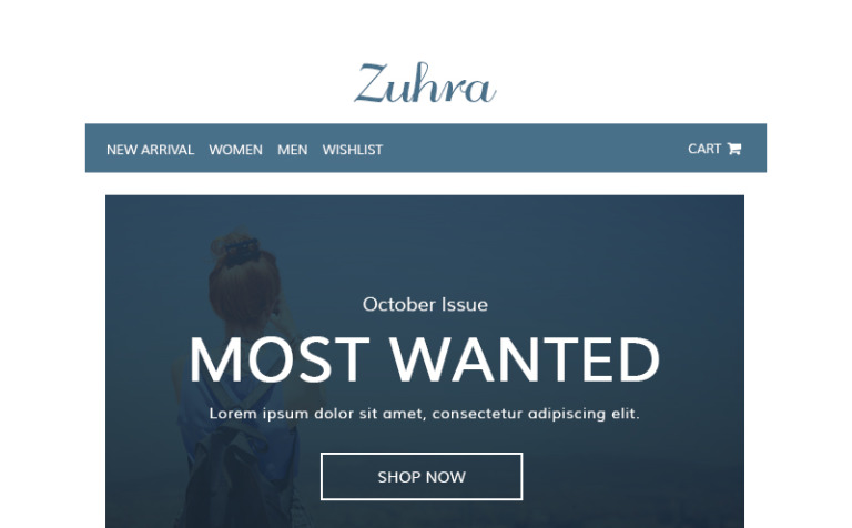 Zuhra - Ecommerce Newsletter Template #65131