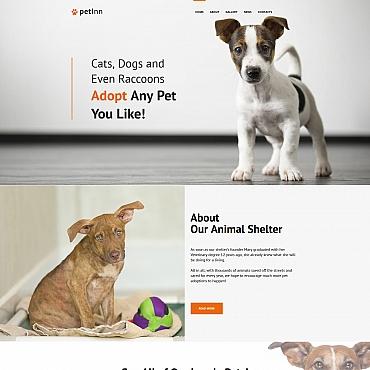 Купить  пофессиональные Moto CMS HTML шаблоны. Купить шаблон #65277 и создать сайт.
