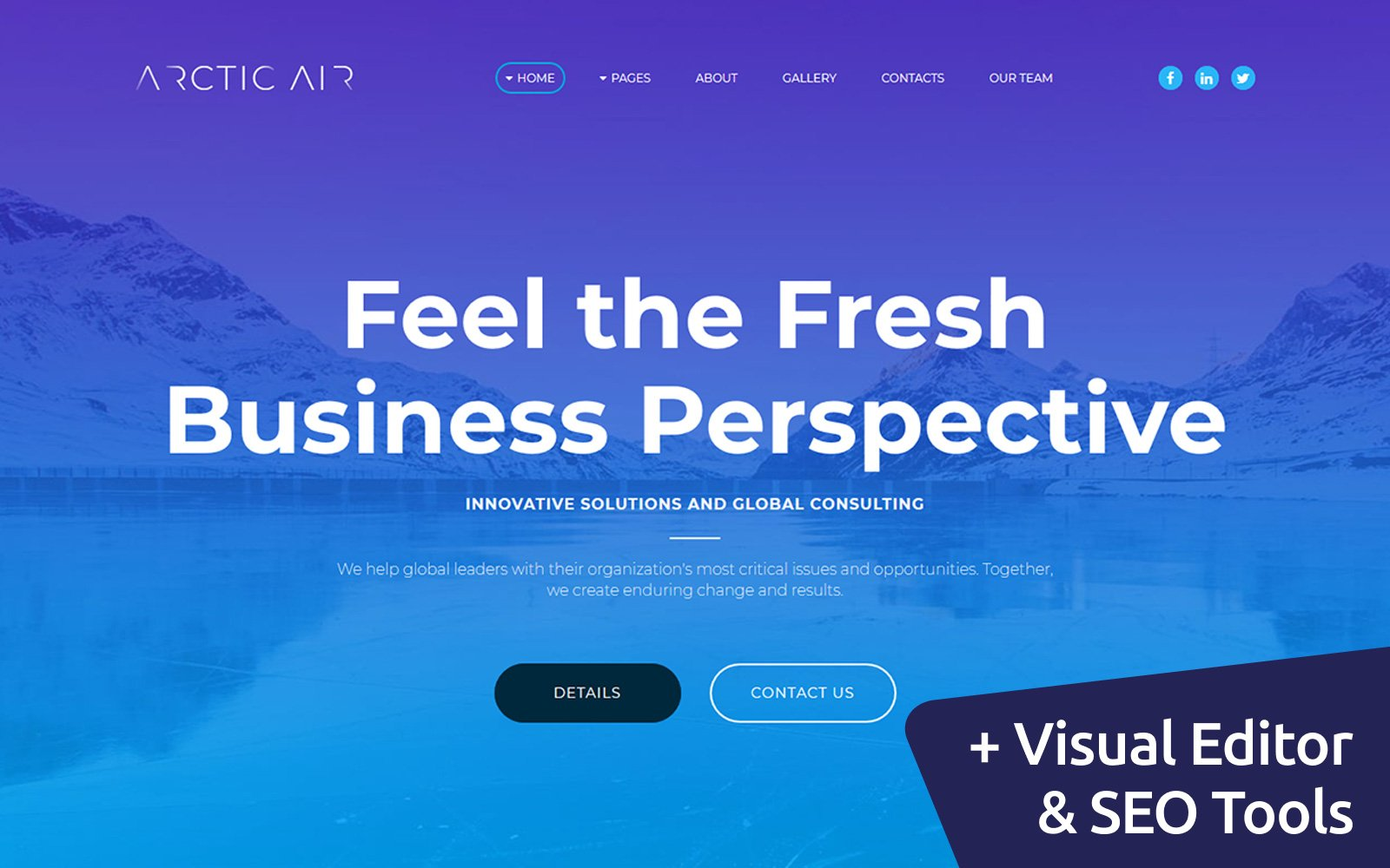 """Arctic - Business Startup"" Responsive Moto CMS 3 Template №65555"