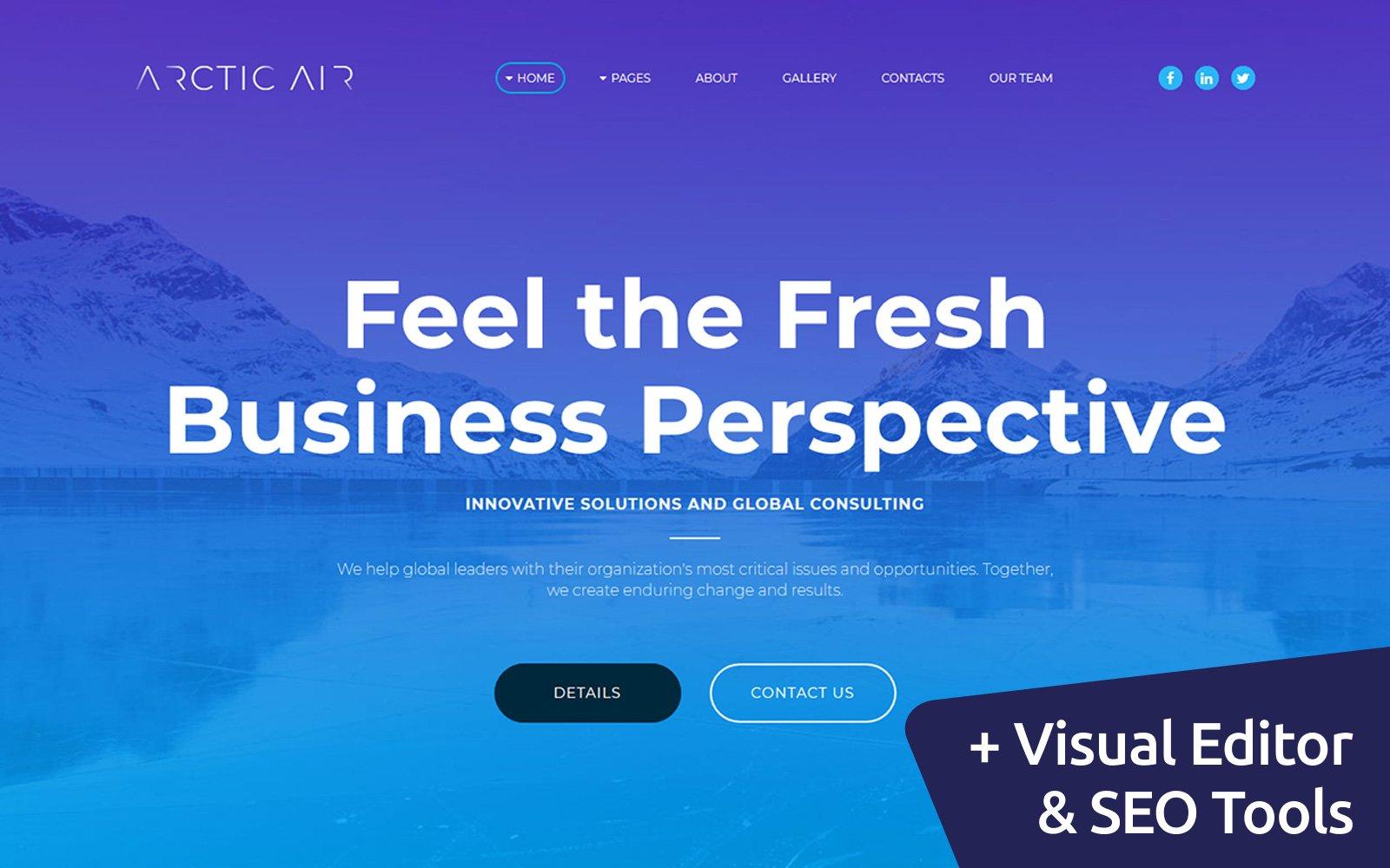 """Arctic - Business Startup"" 响应式Moto CMS 3 模板 #65555"
