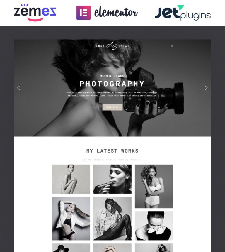 Tema de WordPress #65550 para Sitio de Galerías de fotografía