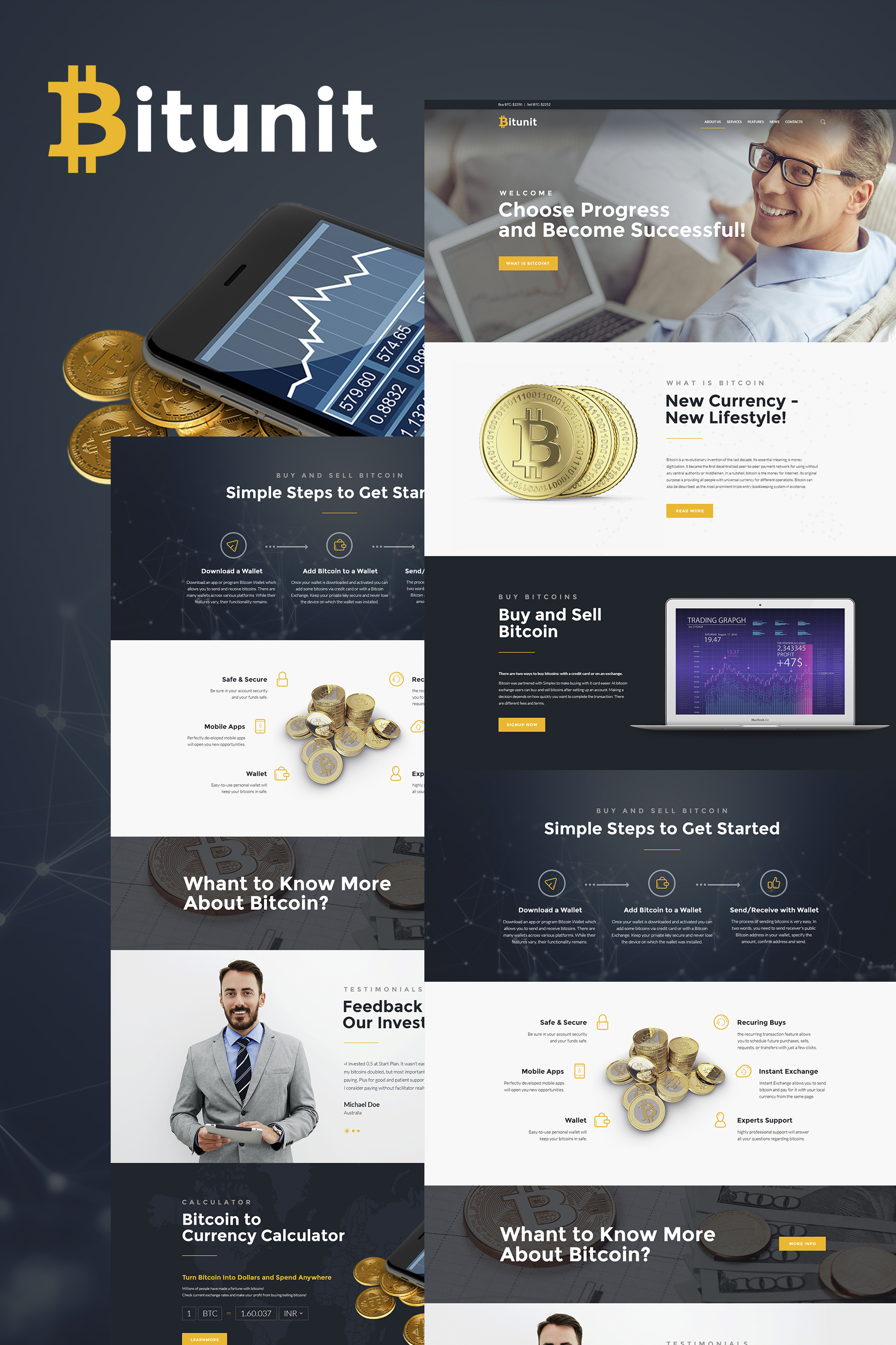 Bitunit Lite - Bitcoin Free WordPress Theme - screenshot