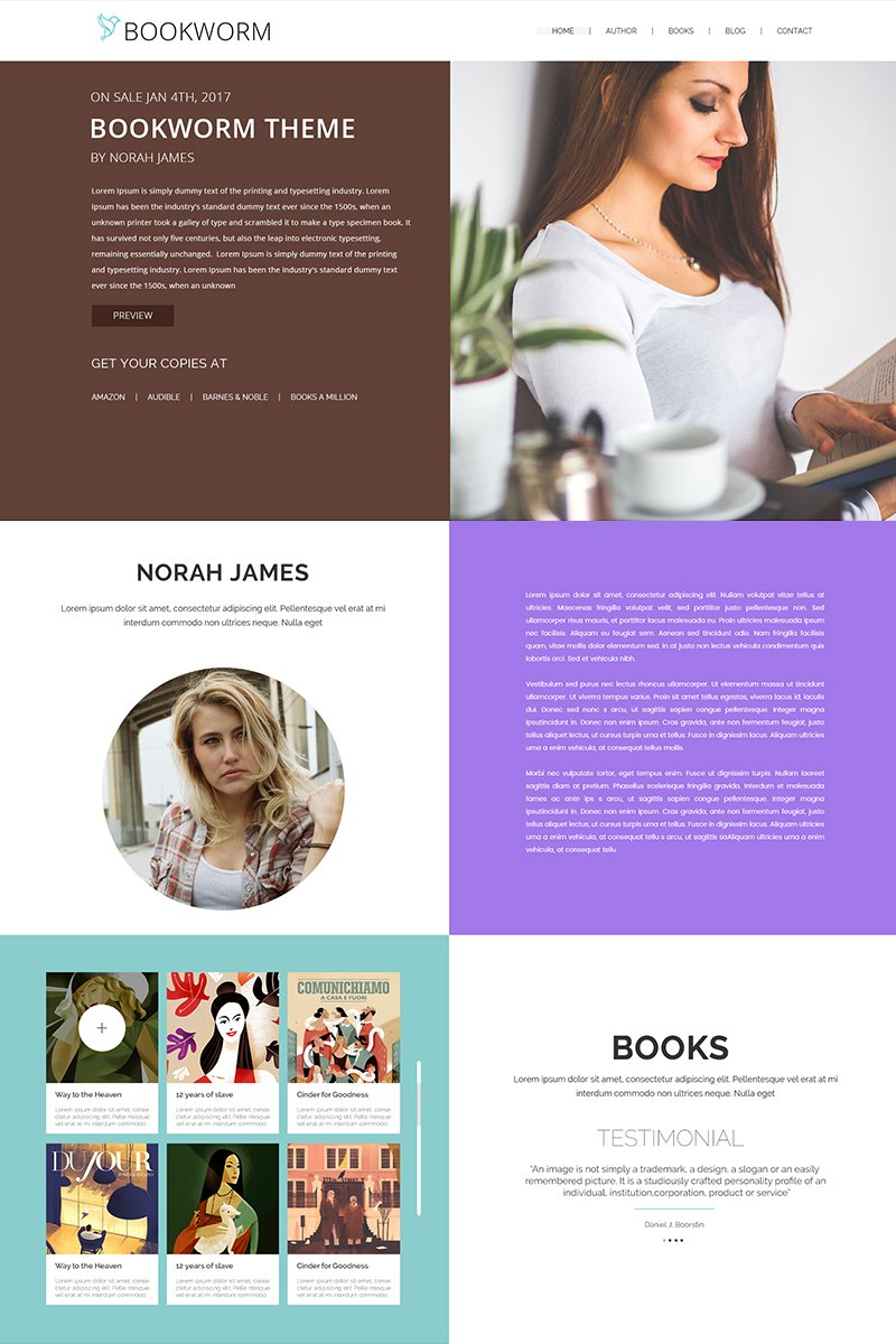 Website Design Template 65748 - publisher blog single page design multicolor fullscreen book customcolor profile minimal clean