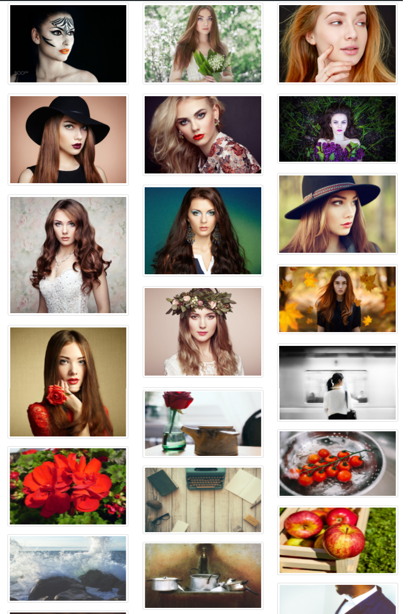 Photo Gallery WordPress Plugin - screenshot