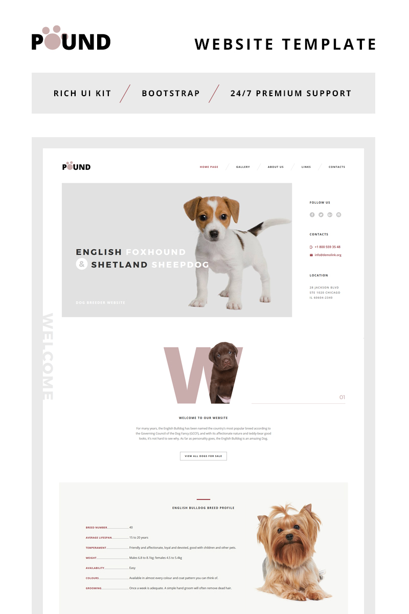 Pound - Animal Care Responsive Website Template