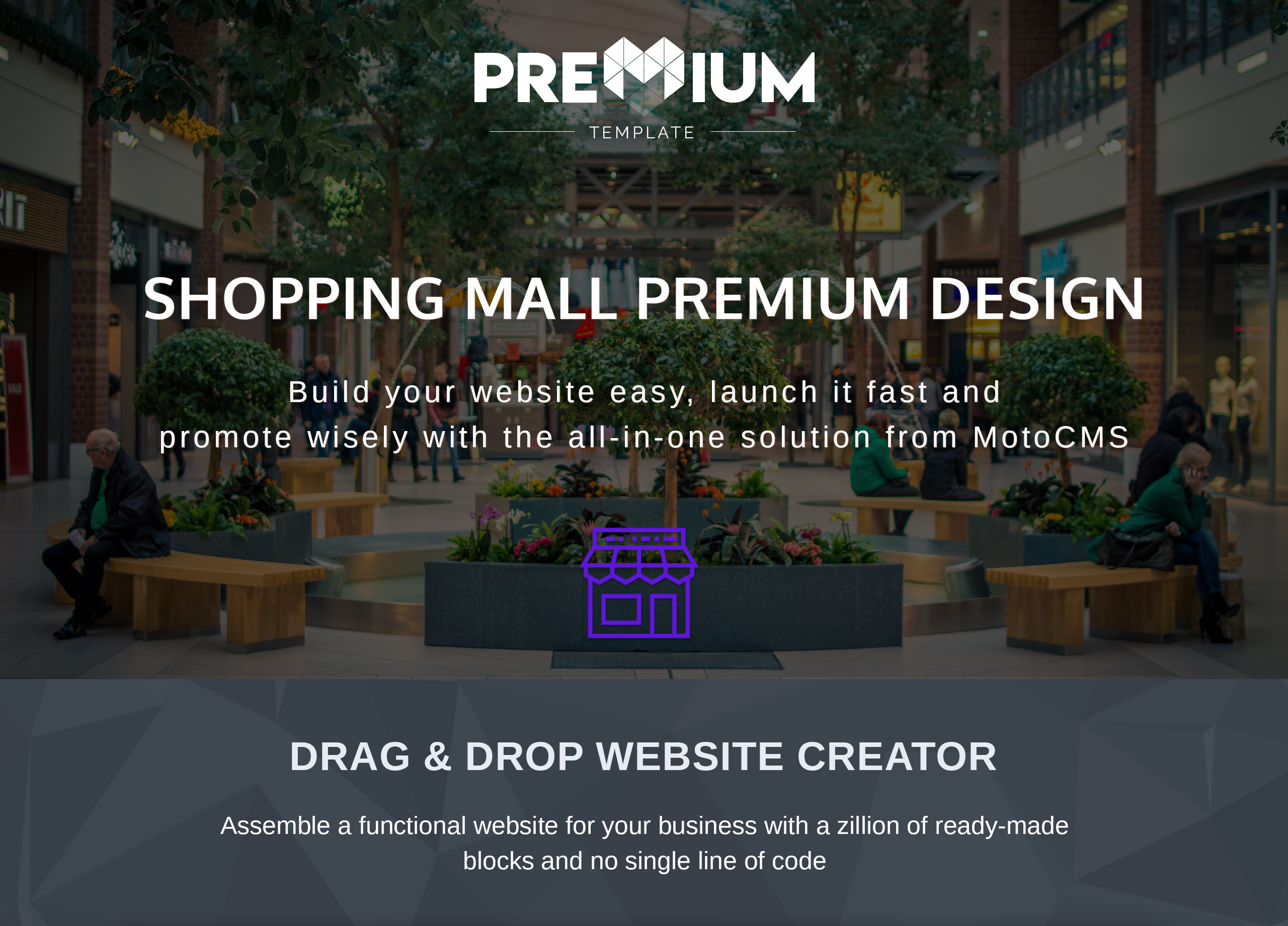Shopping Mall Premium Moto CMS 3 Template