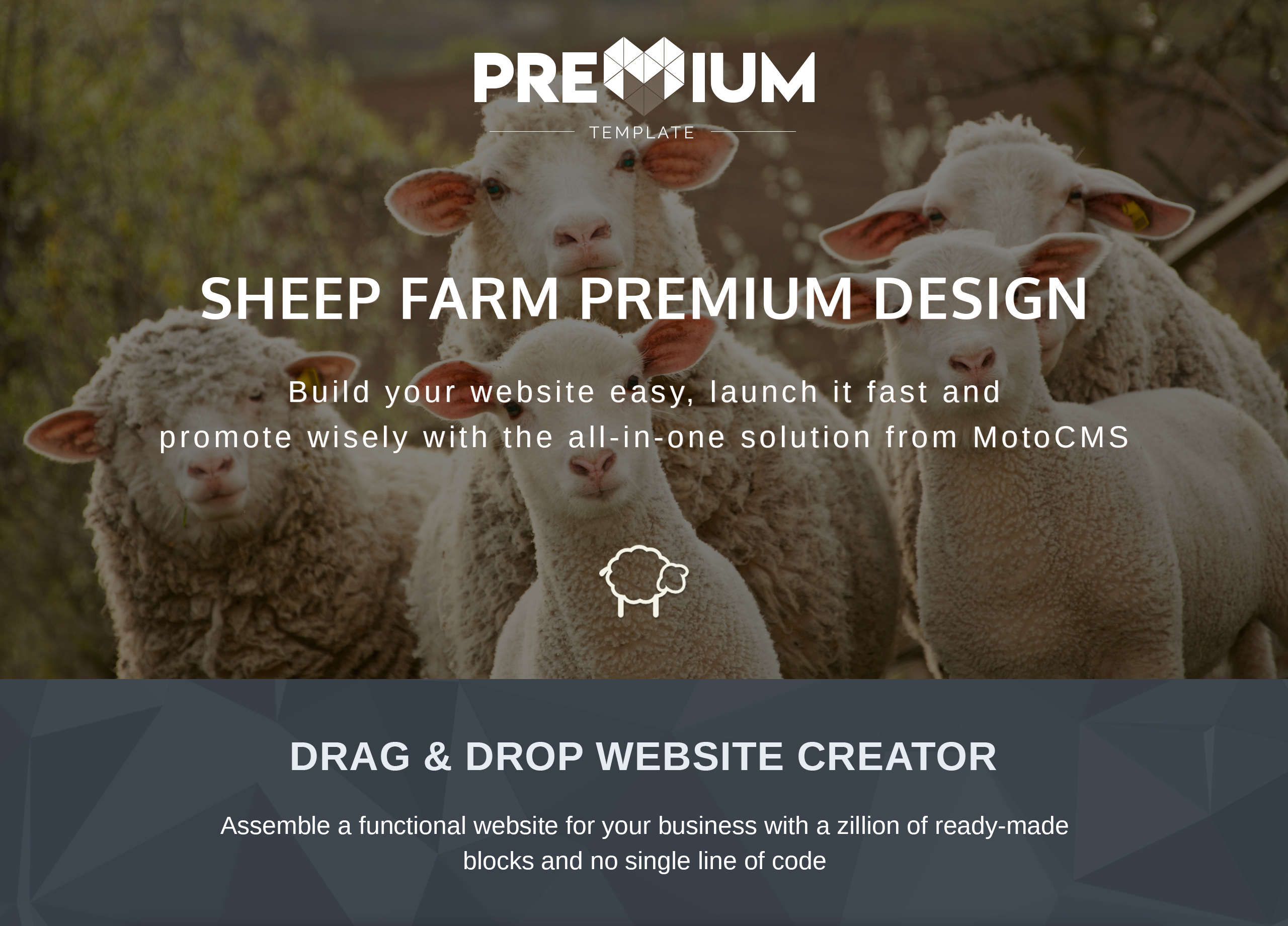 Sheepland Premium Moto CMS 3 Template