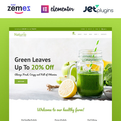 Naturio Food Store Template WooCommerce Theme #66344