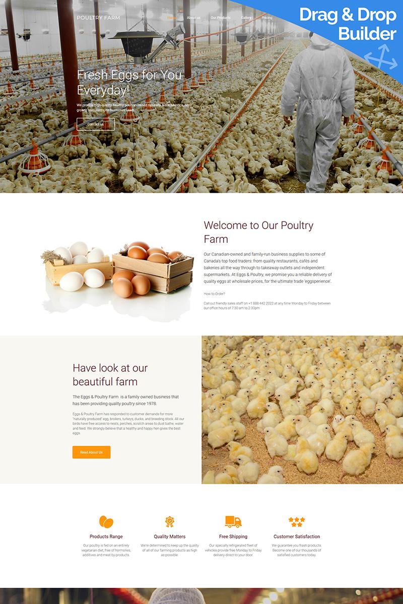 Poultry Farm Premium Moto CMS 3 Template