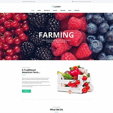 Купить  пофессиональные Moto CMS HTML шаблоны. Купить шаблон #66426 и создать сайт.