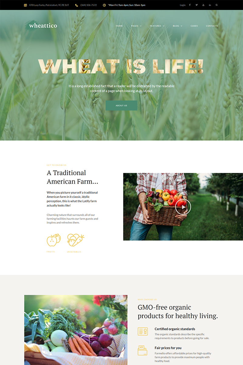 """Wheattico - Crop Farm Responsive"" 响应式WordPress模板 #67924 - 截图"