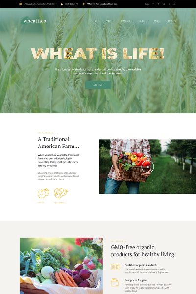 Responsives WordPress Theme für Farm