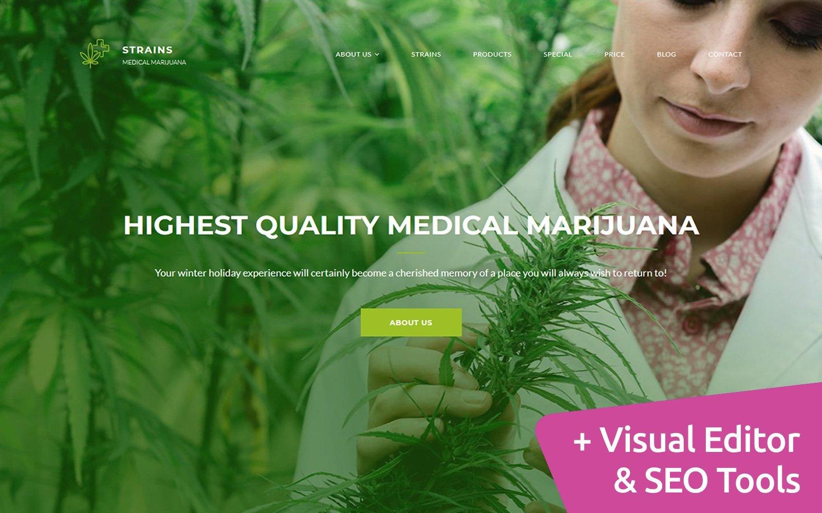 """Medical Marijuana Dispensary - Premium"" Responsive Moto CMS 3 Template №68197"