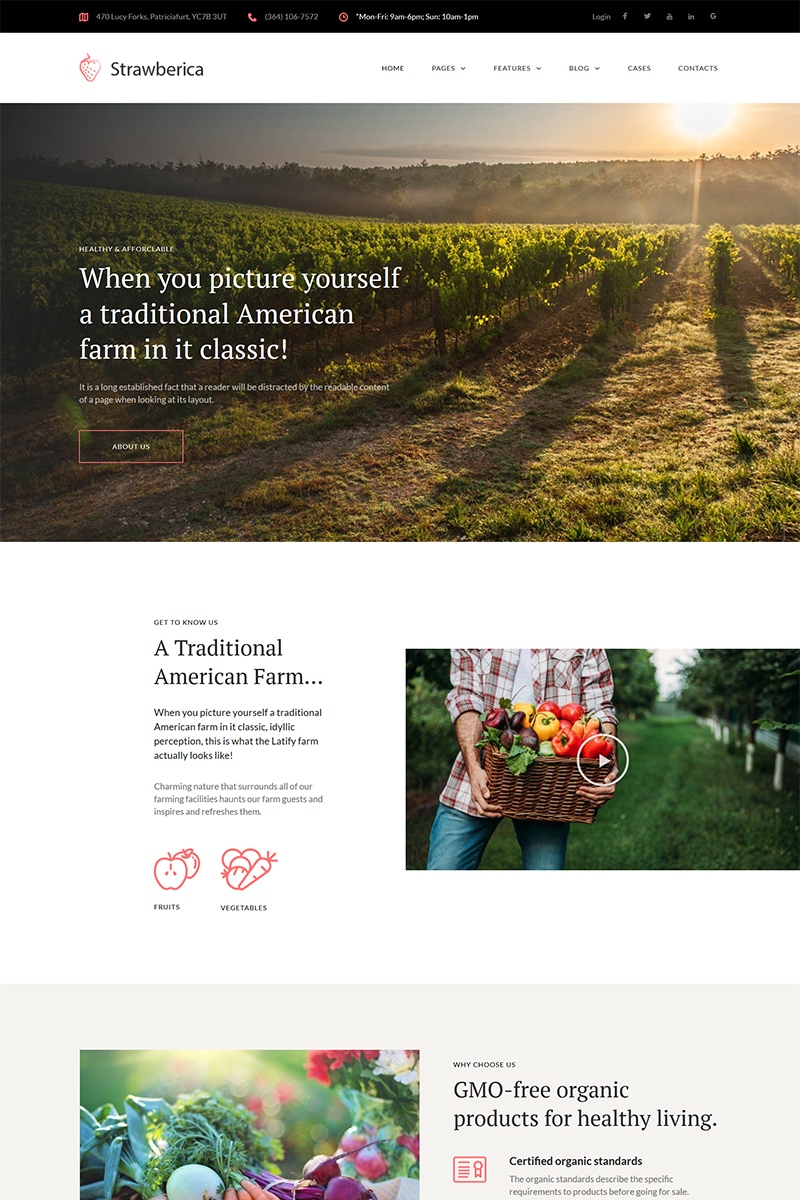 """Strawberica - Vegan Farm Responsive"" thème WordPress  #68283 - screenshot"