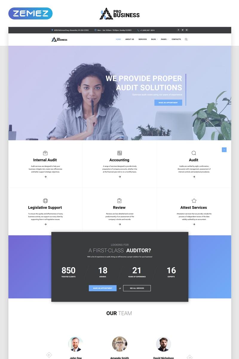 proBusiness - Elegant Audit Company Multipage HTML Website Template - screenshot