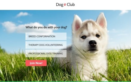 Dog Club - Dog Breeder Compatible with Novi Builder Landing Page Template