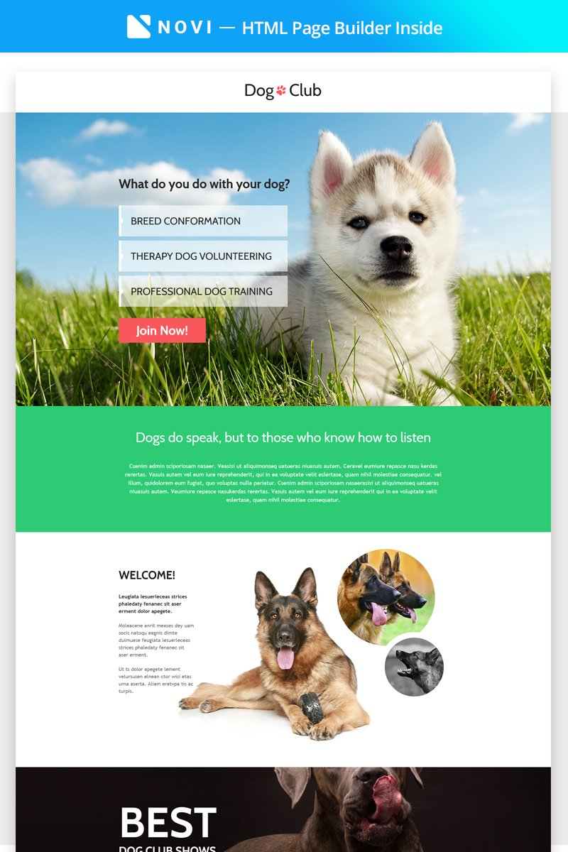 "Modello di Landing Page Responsive #68447 ""Dog Club - Dog Breeder Compatible with Novi Builder"" - screenshot"