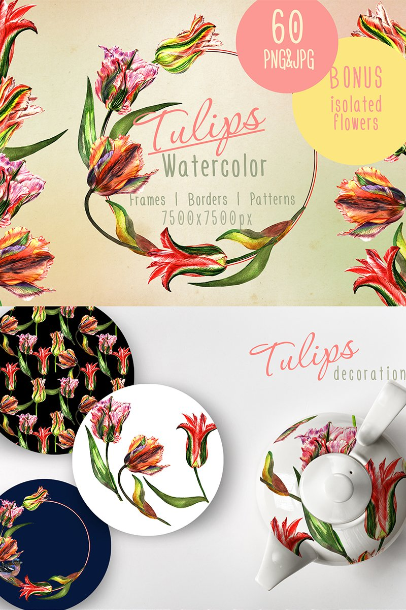 Colorful Tulips PNG Watercolor Set Illustration