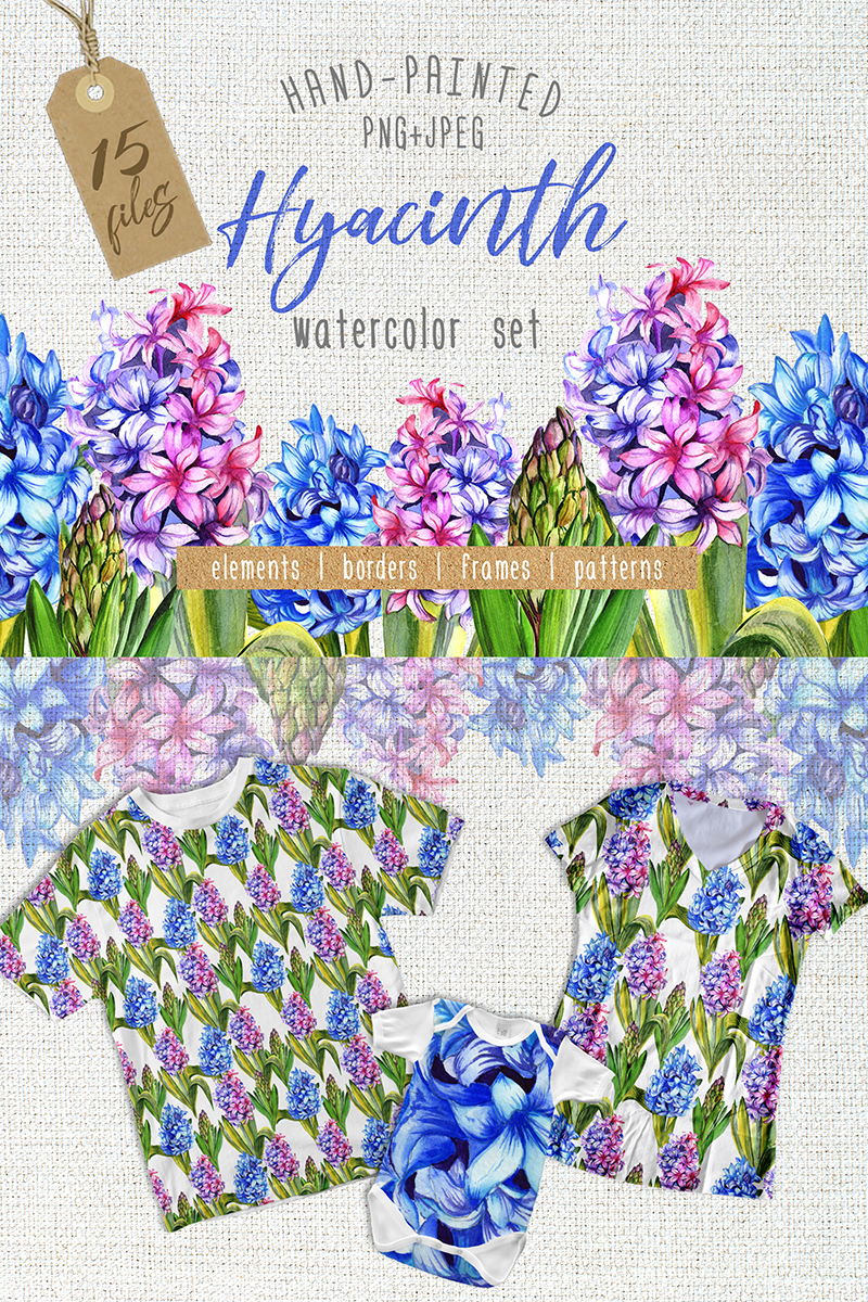 Colorful Hyacinth PNG Watercolor Illustration