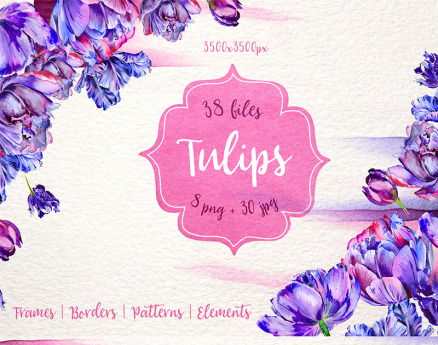 Lovely Purple Tulip PNG Watercolor Set Illustration