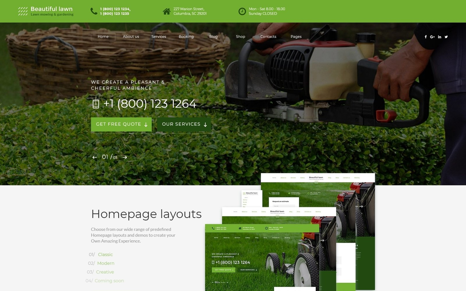 """""""Beautiful Lawn - Lawn Moving And Gardening"""" Responsive Website template №70530"""