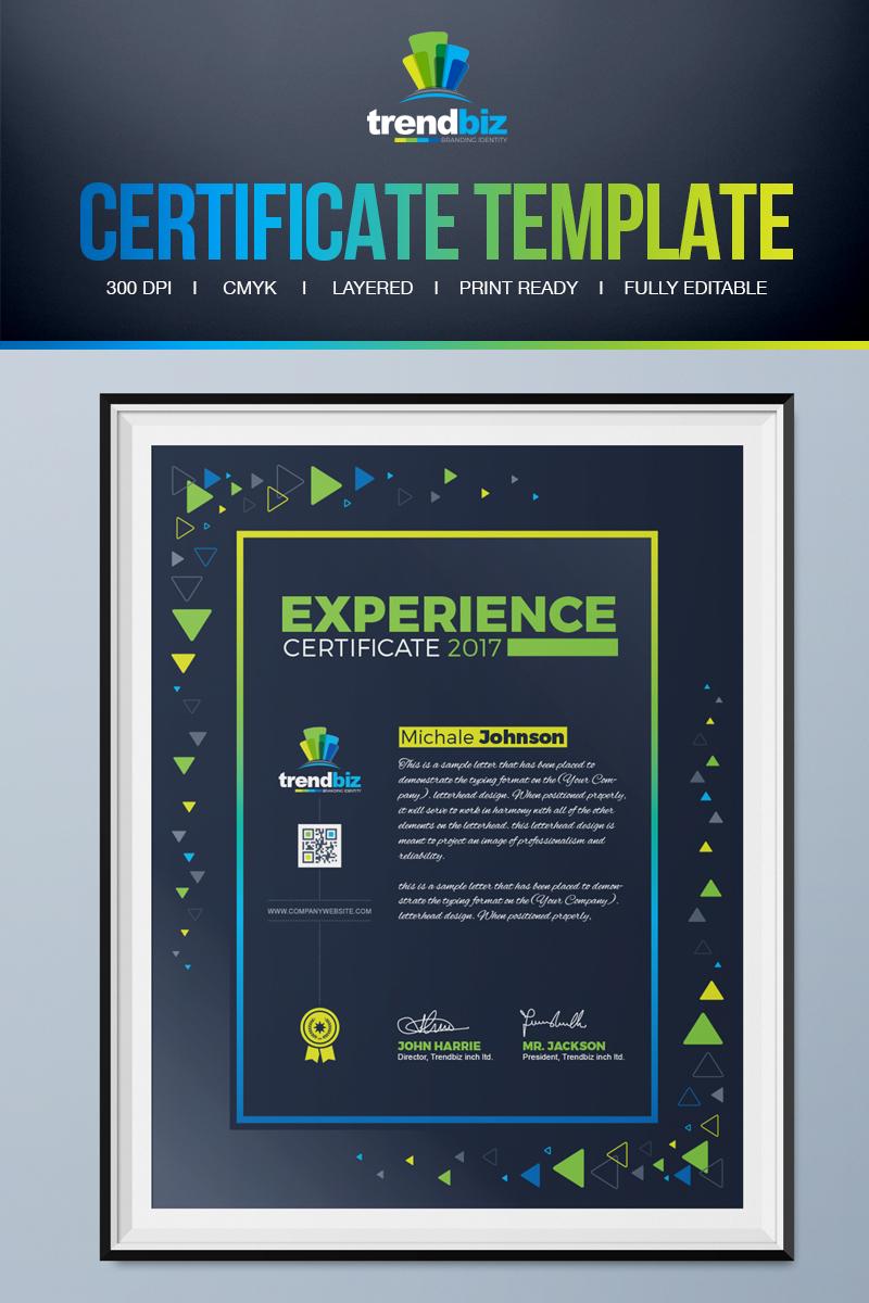 Experience Certificate Template #71669