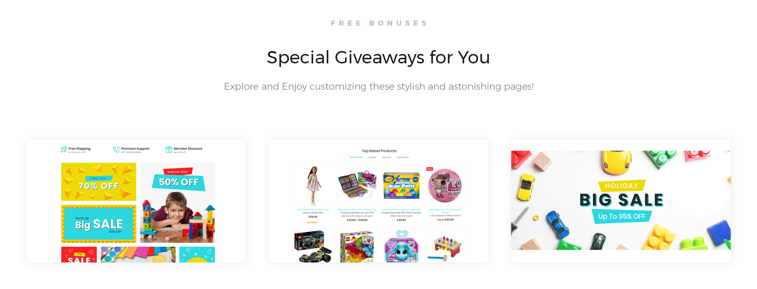 Website Design Template 74488 - premium customer purchase
