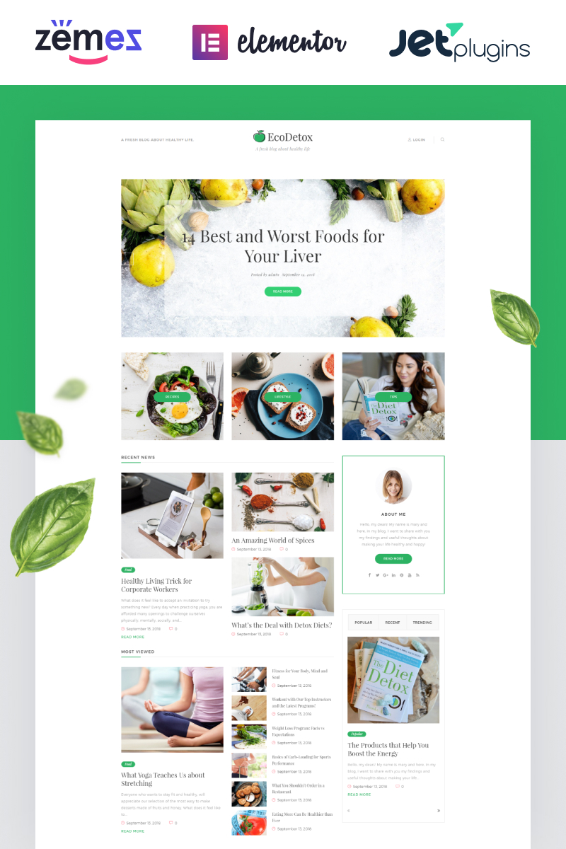 """EcoDex - Fresh Food Blog Website For Healthy Lifestyle"" Responsive WordPress thema №74693"