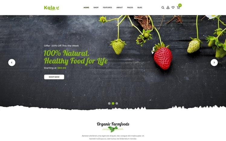 Kalo Health amp Organic Shopify Theme