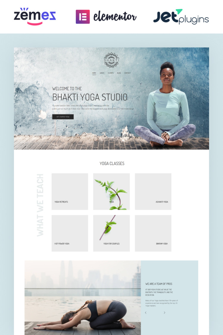 Bhakti WordPress Themes
