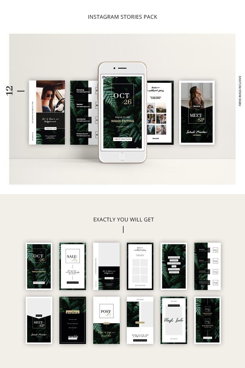 """FERNS Instagram Stories Pack"" - Шаблон для соцмереж №76708"